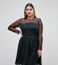 ASOS   Короткое приталенное платье из кружева и сетки добби ASOS CURVE - Черный   Clouty