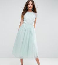 ASOS   Платье миди для выпускного из кружевного тюля ASOS TALL - Зеленый   Clouty