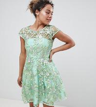 ASOS | Короткое приталенное платье с вышивкой ASOS EDITION Petite - Зеленый | Clouty
