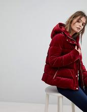 TOMMY HILFIGER   Дутая куртка с капюшоном Tommy Hilfiger - Красный   Clouty