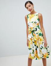 Coast | Хлопковое платье миди с принтом Coast - Мульти | Clouty