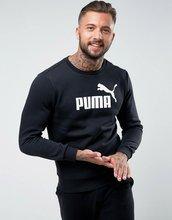 Puma   Черный свитшот с круглым вырезом Puma ESS No.1 83825201 - Черный   Clouty