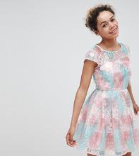 ASOS | Короткое приталенное платье с цветами ASOS EDITION petite - Мульти | Clouty
