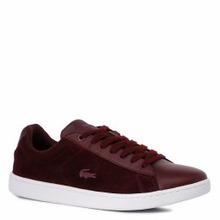 Lacoste | Кеды LACOSTE SPW0015 CARNABY EVO бордовый | Clouty
