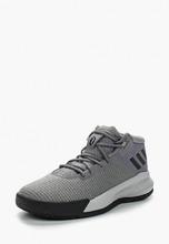 adidas | Кроссовки | Clouty